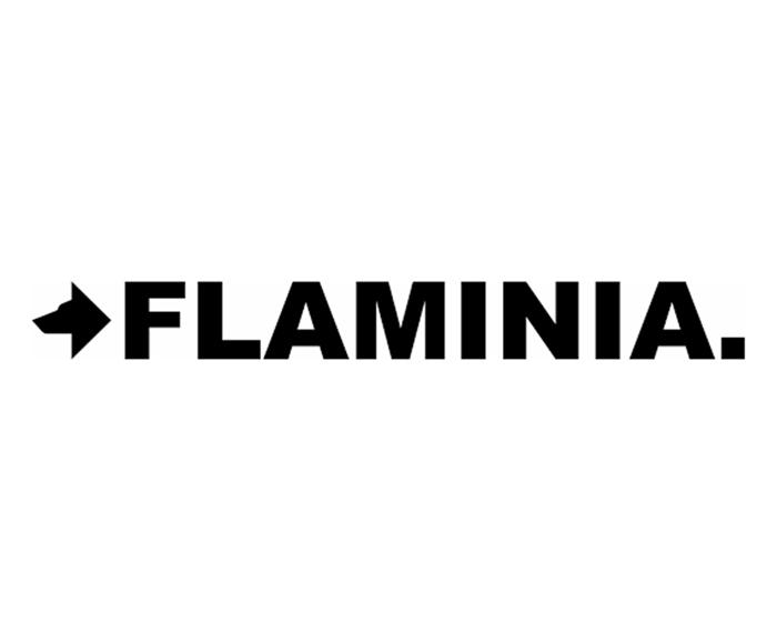 ceramicaflaminia.it